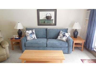 Cambridge Condo/Townhouse For Sale: Mountainview 3 At Smugglers' Notch Resort #3