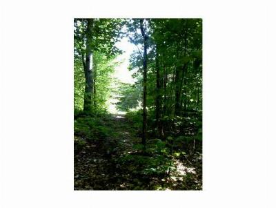 Gilford Residential Lots & Land For Sale: 89 Valley Dr