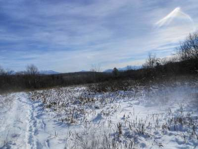 Westford Residential Lots & Land For Sale: Goodrich Trail
