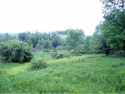 Rutland Town Residential Lots & Land For Sale: 760 Route 4 East Route
