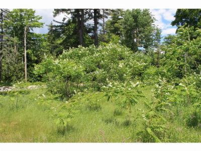 Campton Residential Lots & Land For Sale: 226 Owl Street, Lot 3
