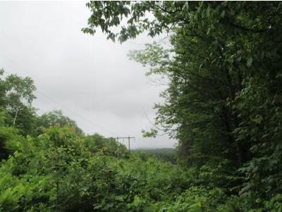 Dalton Residential Lots & Land For Sale: Faraway Road