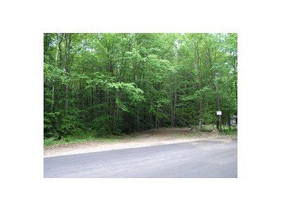 Woodstock Residential Lots & Land For Sale: Lot 21 Black Bear Road