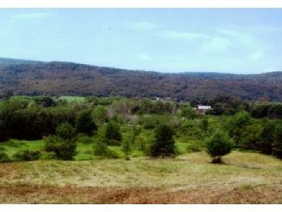 Wallingford Residential Lots & Land For Sale: Green Hill Lane