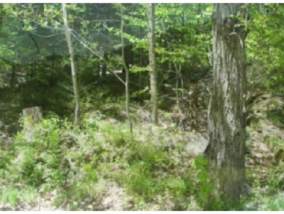 Thornton Residential Lots & Land For Sale: 8-9-5 Millbrook Road #8-9-5