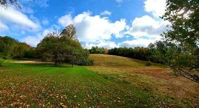 Norwich Residential Lots & Land For Sale: 714 N Beaver Meadow Road
