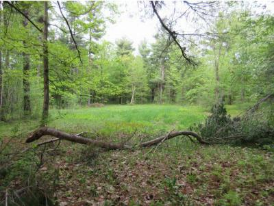 Charlotte VT Residential Lots & Land For Sale: $195,000