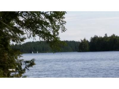 Barrington Single Family Home For Sale: 571 McDaniel Shore Dr Drive