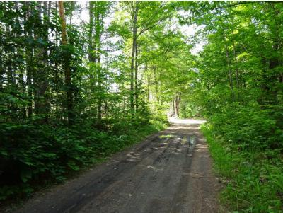 Residential Lots & Land For Sale: Urquhart Road