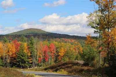 New Boston Residential Lots & Land For Sale: 88-03l Indian Falls Rd