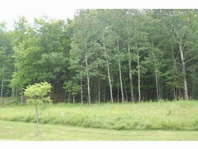 Middlebury Residential Lots & Land For Sale: 234 South Ridge Drive #9