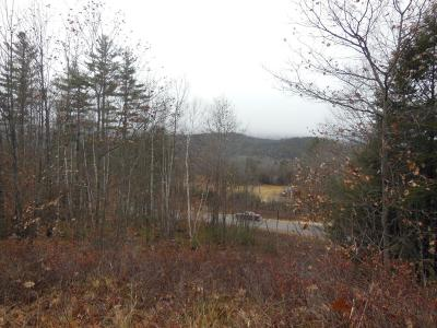 Campton Residential Lots & Land For Sale: 5 Bent Pine Drive