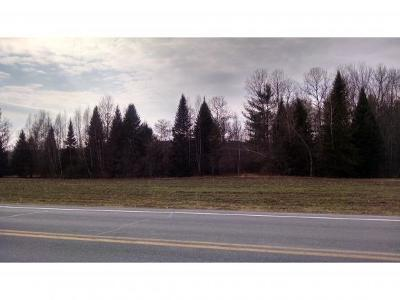 Castleton Residential Lots & Land For Sale: Lot 1 Route 30 North