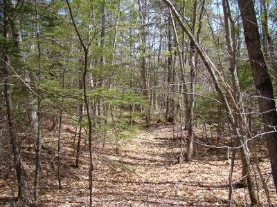 Sandwich Residential Lots & Land For Sale: Squam Lake Road
