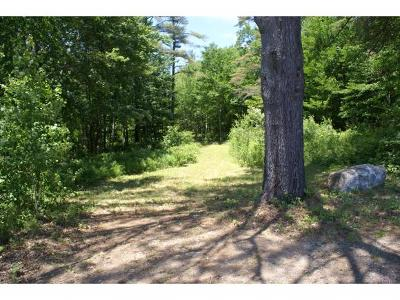 Moultonborough Residential Lots & Land For Sale: 915 Whittier Highway