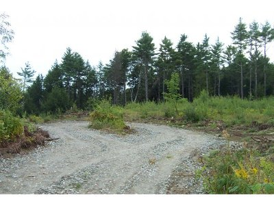 Residential Lots & Land For Sale: Mystic Drive