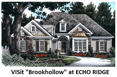 New Boston Single Family Home For Sale: 88-04 Indian Falls Rd Echo Ridge
