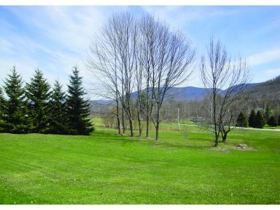 Danby Residential Lots & Land For Sale: 169 Congdon Road