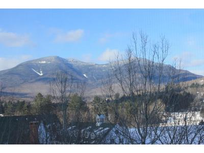 Waterville Valley Condo/Townhouse For Sale: 28 Packards Road, Unit 622 #622