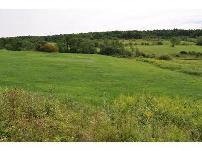 Franklin County Residential Lots & Land For Sale: Lot #3 Paradis Lane