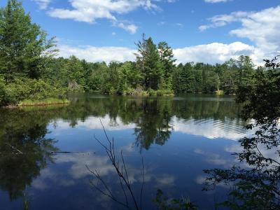 Haverhill NH Residential Lots & Land For Sale: $45,000