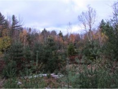 Westford Residential Lots & Land For Sale: Vt Route 128