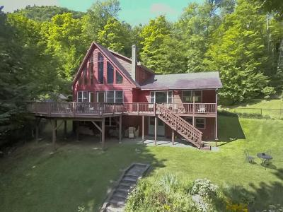 Caledonia County Single Family Home For Sale: 1345 Harvey Mtn. Rd.