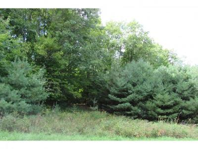 Haverhill Residential Lots & Land For Sale: 110 Lily Lane Lane