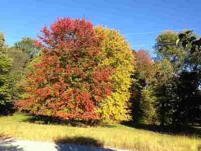 Rutland, Rutland City Residential Lots & Land For Sale: 22 Tuttle Meadow Drive Drive #Lot#67