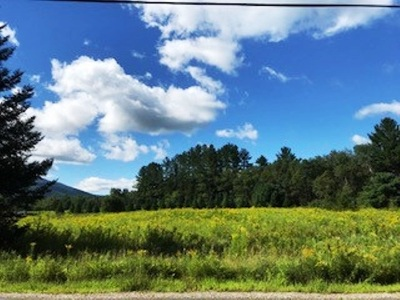 Franconia Residential Lots & Land For Sale: 25 Lafayette Road