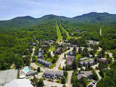 Cambridge Condo/Townhouse For Sale: 13 Villmarksauna Smugglers' Notch Resort #13