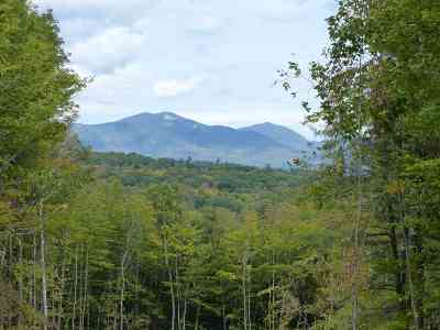 Sandwich Residential Lots & Land For Sale: 15 Q Buzzell Ridge Road #12 Lot