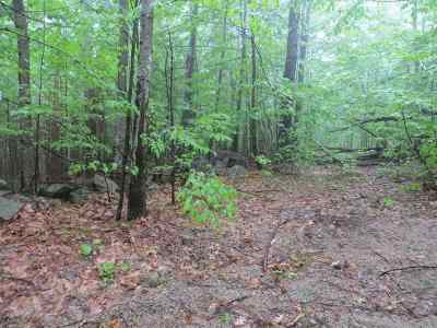 Moultonborough Residential Lots & Land For Sale: Lot #16 Hartford Valley Road