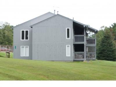 Burke Condo/Townhouse For Sale: 2200 Mountain Road Unit #38