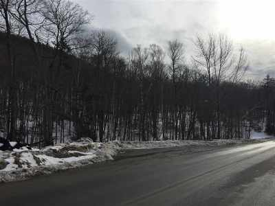 Buels Gore Residential Lots & Land For Sale: Route 17