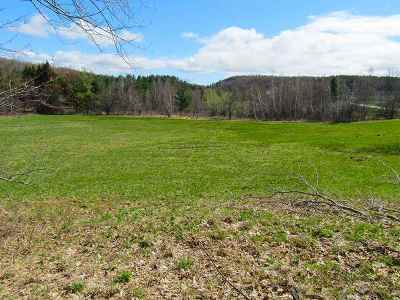 Berkshire Residential Lots & Land For Sale: 4629-3 Water Tower Road #3