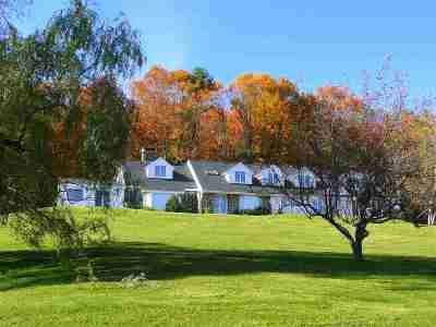 Stowe Single Family Home For Sale: 217 Horizons Lane