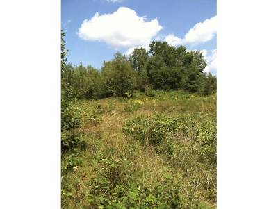Lisbon Residential Lots & Land For Sale: 1 Caterall Road #1
