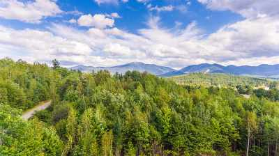 Franconia Residential Lots & Land For Sale: Scragg Mountain Road