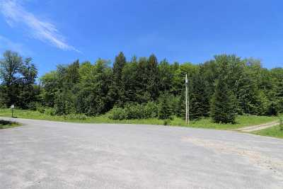 Woodstock Residential Lots & Land For Sale: 4 Smith Brook Drive #4