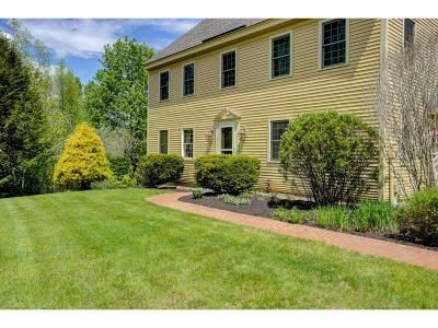 New Boston Single Family Home For Sale: 128 Carriage Road