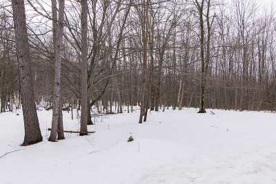 Hinesburg Residential Lots & Land For Sale: 385 Enos Road #Lot #3