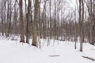 Hinesburg Residential Lots & Land For Sale: 385 Enos Road #Lot #2