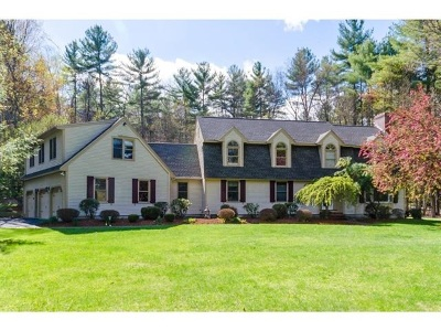Amherst Single Family Home For Sale: 17 New South Drive
