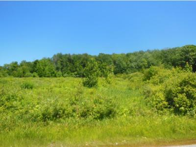 Gilford Residential Lots & Land For Sale: 366 Belknap Mountain Road