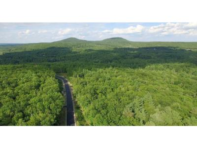 New Boston Residential Lots & Land For Sale: 89-00l Indian Falls Rd