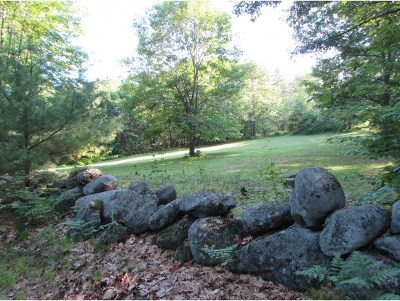New Boston Residential Lots & Land For Sale: Weare Road #Lot 95-1