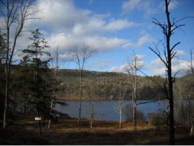 Fairlee Residential Lots & Land For Sale: Lake Morey Road East