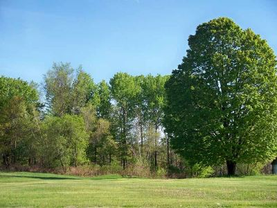 Fair Haven Residential Lots & Land For Sale: Swamp Road