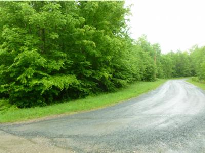 Franconia Residential Lots & Land For Sale: 9 Beechwood Lane